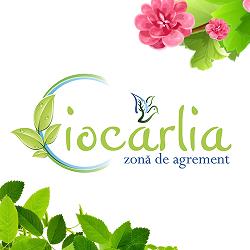 Ciocârlia - Cafe de Flore